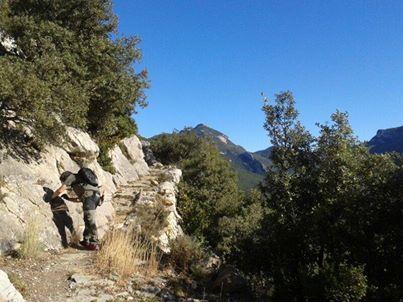 Manteniment de camins a l'Alta Garrotxa!