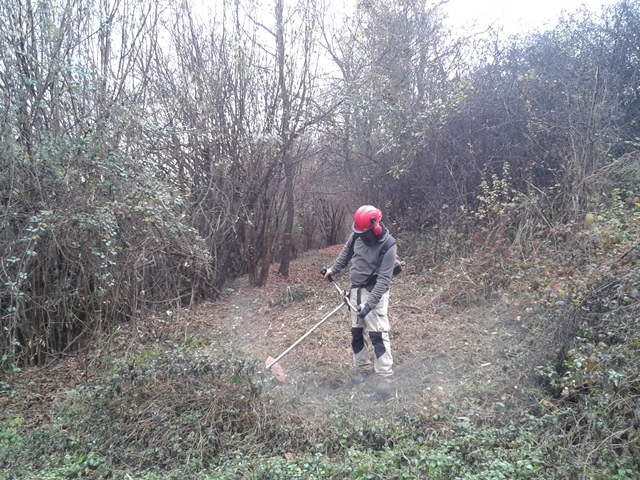 Treballs de desbrossament al camí ral de Vallfogona a Ripoll